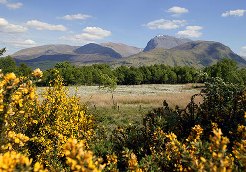 ashburn-house-bed-and-breakfast-ben-nevis-2